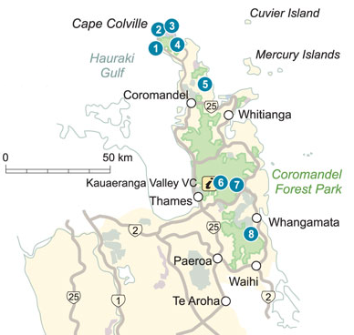 DoC campsites in Coromandel