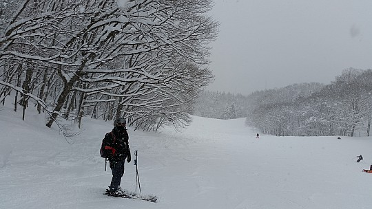 2015-02-10 10.40.48 Jim - Iwatake - snowing on run down from Paradise Triple.jpeg: 5312x2988, 5732k (2015 Feb 21 08:29)