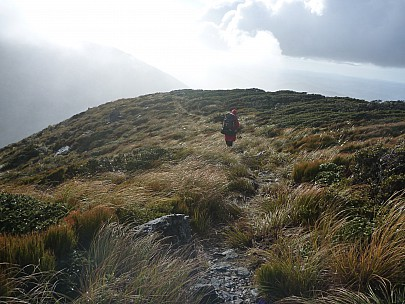 2015-05-31 09.57.23 P1010946 Simon - Bruce heading down the Atiwhakatu track.jpeg: 4000x3000, 6790k (2015 Jun 14 05:10)