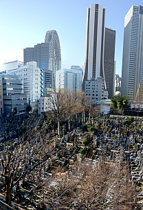 2016-03-03 08.34.05 P1000847 Simon - Shinjuku architecture_stitch.jpg: 4411x6451, 30678k (2016 Sep 07 09:20)