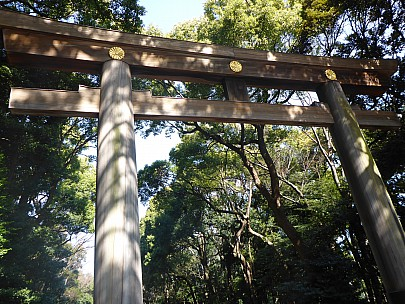 2016-03-03 10.38.06 P1000859 Simon - Torii gate to Meiji Shrine.jpeg: 4608x3456, 6213k (2016 Mar 02 21:38)