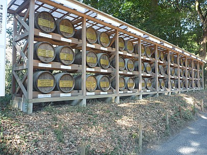 2016-03-03 10.45.02 P1020417 Adrian - wine barrels.jpeg: 4000x3000, 7120k (2016 Mar 07 09:35)