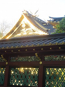 2017-01-11 15.29.03 IMG_8263 Anne - Toshugo Shrine.jpeg: 3456x4608, 4736k (2017 Jan 26 05:34)