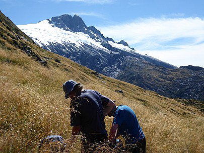 2019-01-16 11.18.52 P1010566 Brian - Jim and Alan in the snowgrass, Mt Hooker behind.jpeg: 4000x3000, 4871k (2019 Jun 24 09:09)