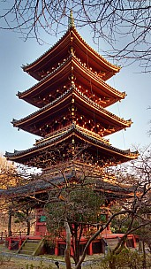 2017-01-11 15.51.21 IMG_20170111_155121382_HDR Simon - Pagoda.jpeg: 2340x4160, 2315k (2017 Jan 11 08:22)